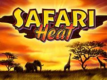 Игровые аппараты Safari Heat