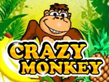 Автоматы Вулкан Crazy Monkey