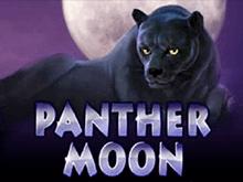 Автомат игровой Panther Moon онлай